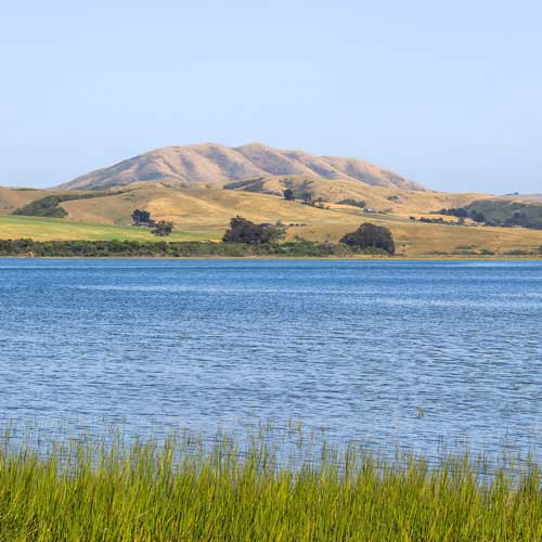 tomales bay cottages